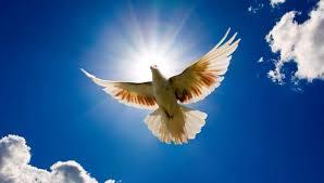 Prière universelle du dimanche de Pentecôte 2019
